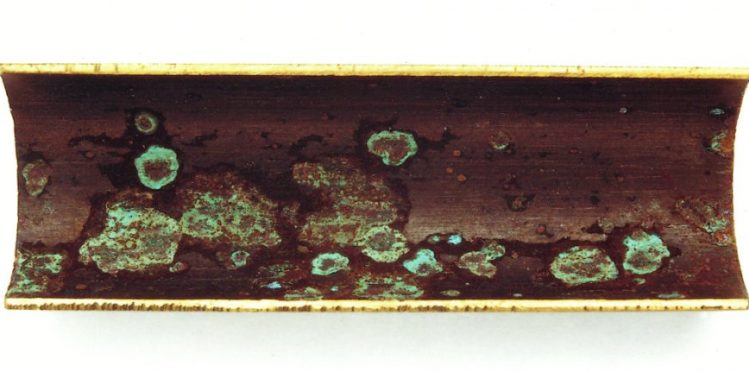 photograph of sulfate bacteria causing corrosion in a pipe