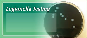 legionella testing display photo with cells enlarged